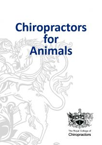 Chiropractors for Animals thumb